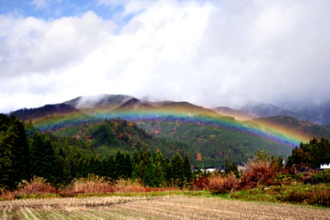 111124_rainbow